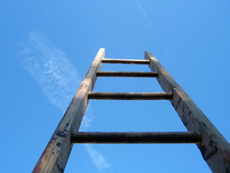 800px-The_ladder_of_life_is_full_of_splinters