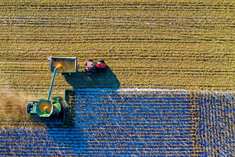 Agricultural innovation driven by digital intelligence