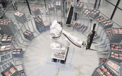 ABB robotics offer SA's food and beverage industry a taste of the future